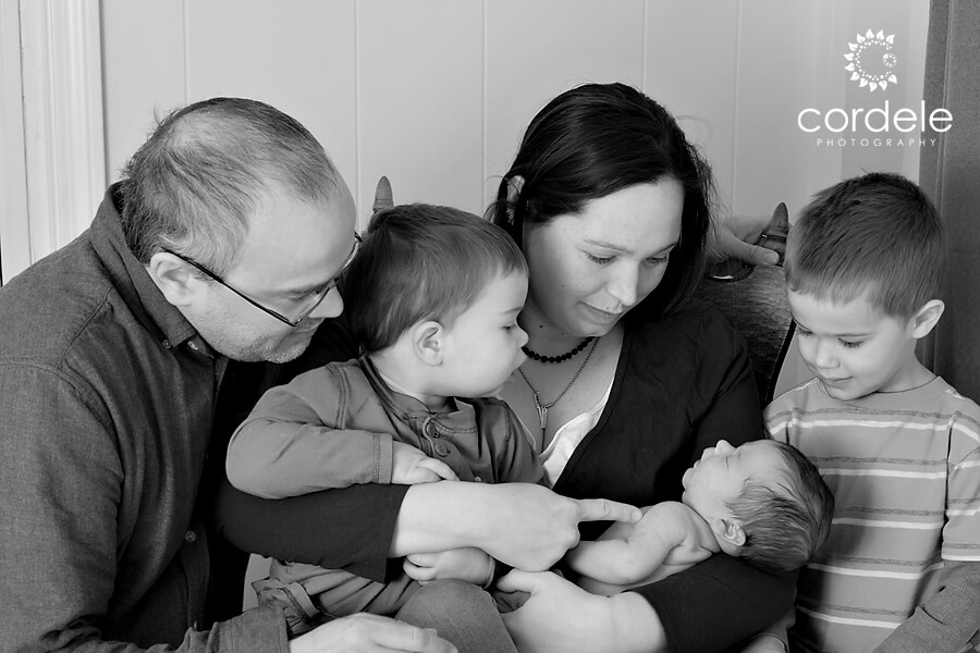 black and white newborn photographers lynnfield ma